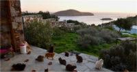 Photo of La oferta para los amantes de los gatos vivir con todo pago en esta isla