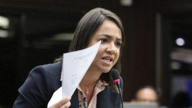 Photo of Diputada Faride Raful atribuye robos de los recursos del Estado al presidente Danilo Medina